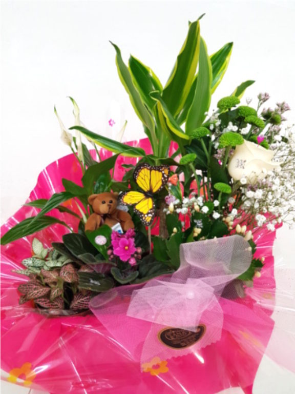 Detalles Florales My Cms - Detalles-florales